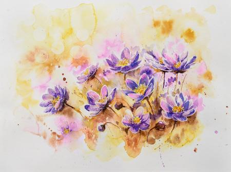 Pennywort blossom watercolors painted. Blooming liverwort flower. Kidneywort in natural environment.
