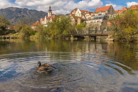 Pond in park and exterior view of old town main street square with historic houses in background. Frohnleiten, Styria, Austria 版權商用圖片