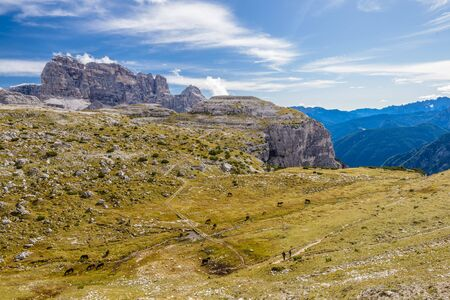 .Mountains valley with green grass and horses. Mountains in Tre Cime park in Dolomites, Italy. Italian alps. Banco de Imagens