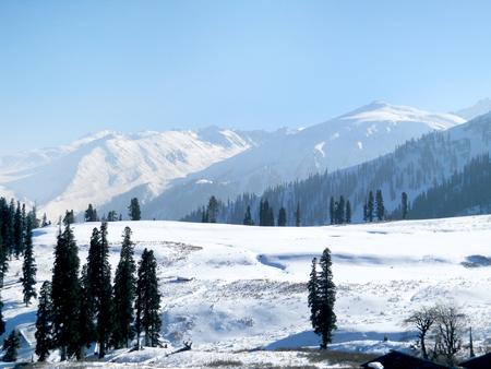 Natural Scene of Mountain in Shim la