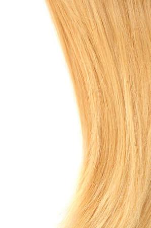 머리는 흰색에 고립