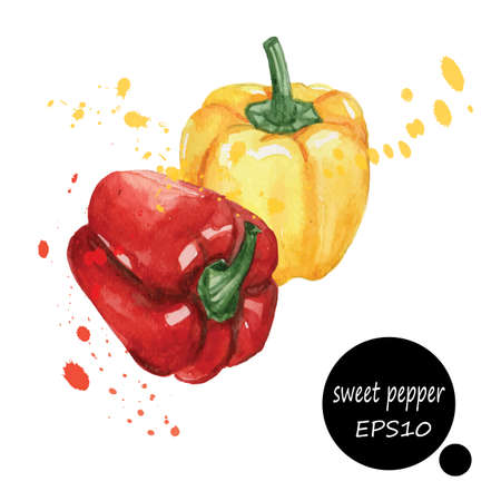 organic peppers sign: style design for the label, cover, menu  paper texture blots brush illustration EPS10 Illustration