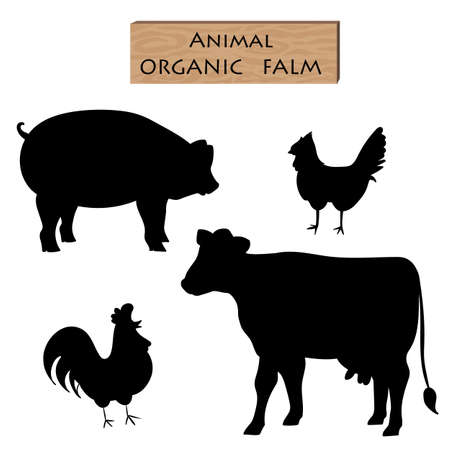 silhouette set farm animal cow pig chicken with parts name meat doodle with detail meat brush font vector illustration