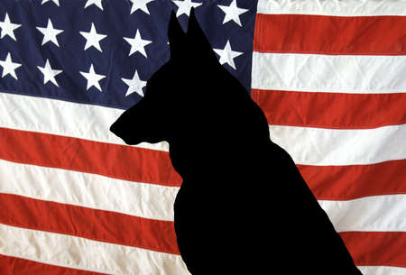 犬歯: 米国旗のジャーマン ・ シェパード シルエット。すべての私たちの英雄の人。