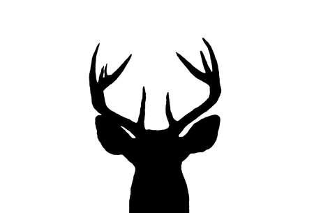 white tail: Una silhouette di una testa di uomo bianco Tail Deer