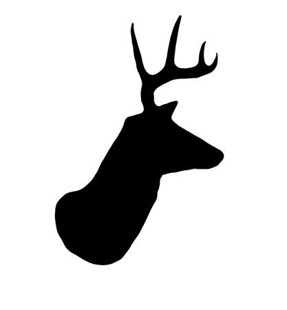 white tailed deer: A profile of a whitetail deer buck silhouette isolated on white. Stock Photo
