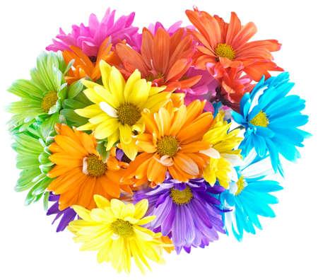 daisys: Vibrant Multicolored bouquet of flowers (daisys) Bellis simplex Stock Photo