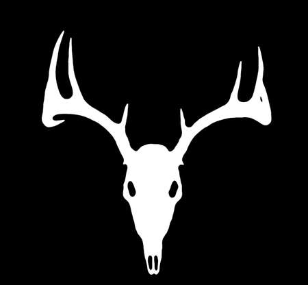 whitetail buck: A European Deer Silhouette White on Black Stock Photo