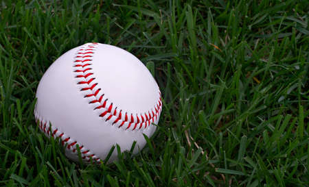 hardball: A hardball sitting in the green grass