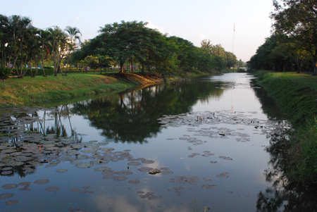 pond in the afternoon