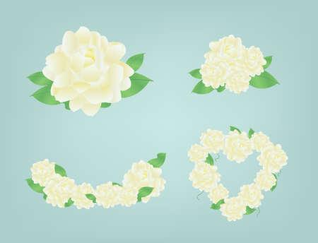 Jasmine fleurs en forme de coeur Vecteurs