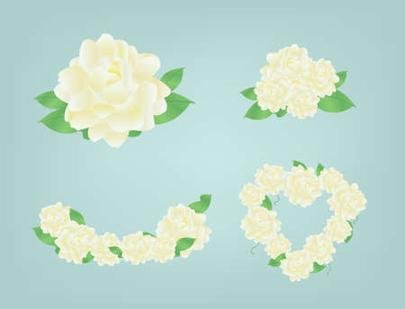 jasmine: Jasmine flower in heart shape