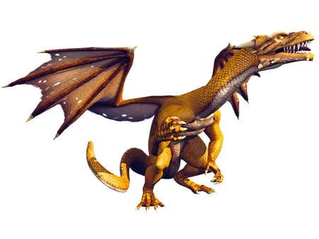 drake: Golden Dragon Looking Upwards
