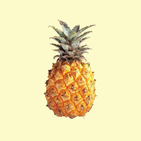 tessellated: A pineapple in triangulation technique on yellow background