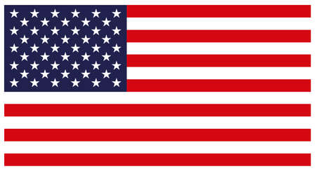 indivisible: Flag of the United States. Colorful vector icon on white background.