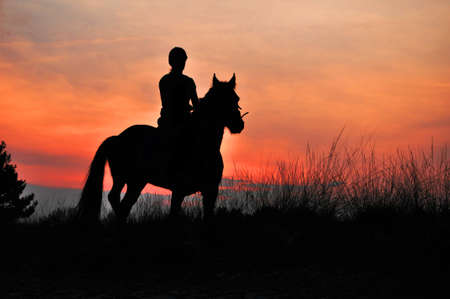 A Rider Silhouette on Horseback by sunset Stock Photo