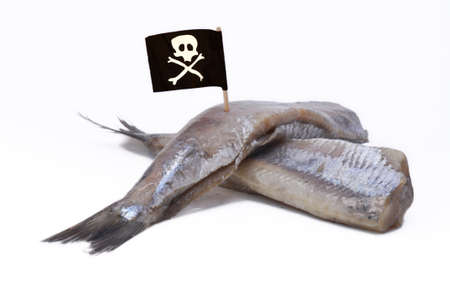 Piracy in fishery, in opposition to individual fishing quota Standard-Bild