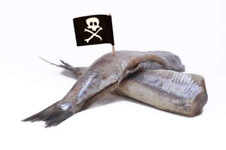 Piraterij in de visserij, in tegenstelling tot individuele visserij quota Stockfoto