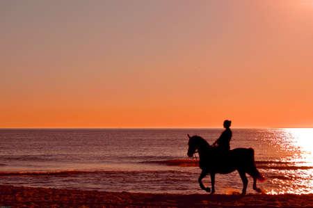 caballo de mar: Paseos a caballo - jinete del caballo en la playa durante la puesta de sol Foto de archivo