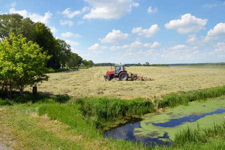Een boerderij tractor pulling een hooi hark in een veld om het gras schoothoek in een Nederlands landschap
