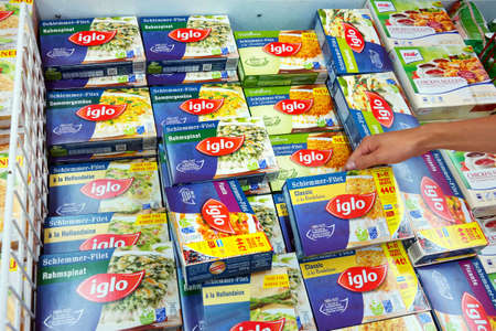 gastronome: PAPENBURG, GERMANY - AUGUST 2015: Igloo Frozen meals in a Real Hypermarket. Iglo Group is a frozen food company owned by Nomad Foods, a British Virgin Islands-based food company.
