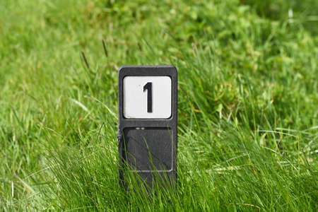 cypher: Number one sign. Pole with number 1 in grass, an indication of an address.