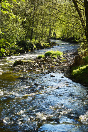 arden: A clear creek in the Belgian Ardennes. The Eau Rouge is a small stream in the Belgian province of Liege, right tributary of the Ambleve.