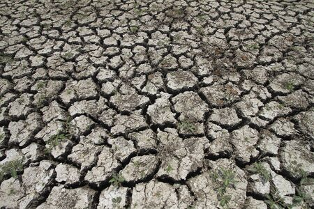 splitting: Cracked earth resulting from drought season.