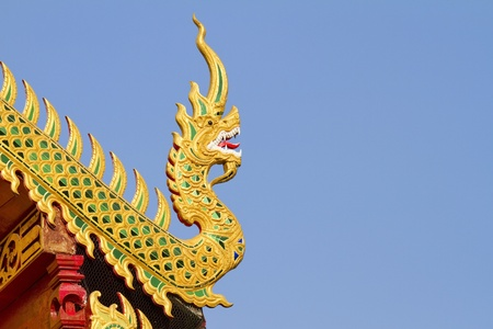 naga china: golden snake, dragon creature, Thai style