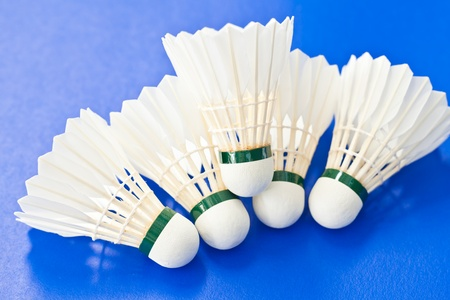 Badminton close up Stock Photo - 14059487