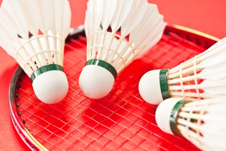 a racket and shuttlecock on red photo