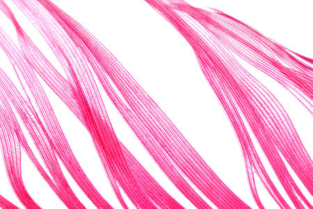 red feather abstract texture background isolated on white photo