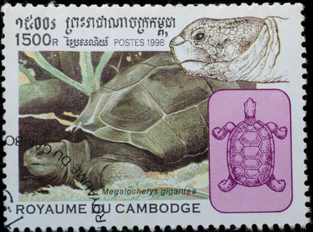 cambodge: CAMBODGE - CIRCA 1998: A stamp printed in CAMBODGE shows animal reptile turtle Megalochelys gigantea, circa 1998