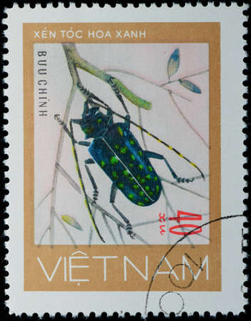 VIETNAM - CIRCA 1980s: A stamp printed in Vietnam shows animal insect long horn beetle bug, circa 1980s photo