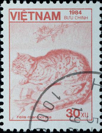 VIETNAM - CIRCA 1984: A stamp printed in Vietnam shows wild animal Felis lynx, circa 1984 photo
