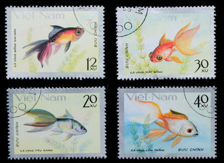 VIETNAM - CIRCA 1980: A stamp printed in Vietnam shows animal goldfish , circa 1980 photo