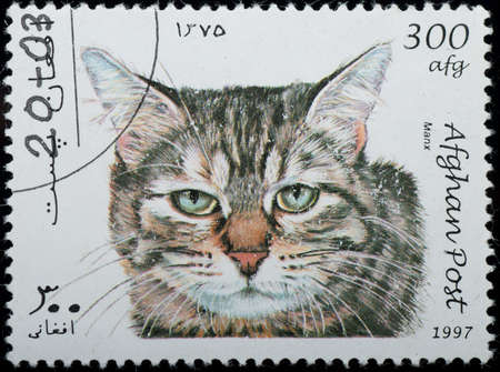AFGHANISTAN - CIRCA 1997: A stamp printed in Afghanistan show animal pet cat, circa 1997 photo