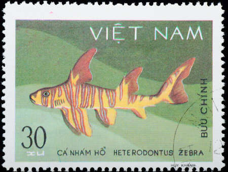 bullhead: VIETNAM - CIRCA 1980: A stamp printed in Vietnam shows animal fish zebra bullhead shark , circa 1980