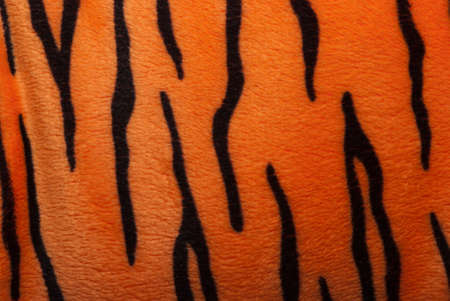 tiger fur texture photo