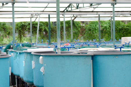 Agriculture aquaculture water system farm Stock Photo - 9939685