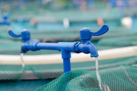 fish farming: Agriculture aquaculture water system farm
