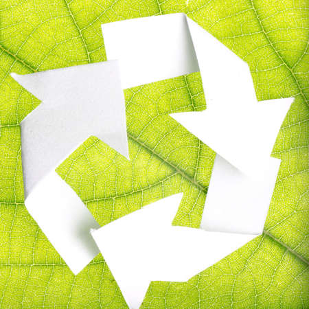 nature recycle abstract concept green leaf background Stock Photo - 10277822