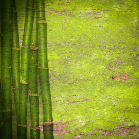bamboo background: abstract bamboo green background Stock Photo