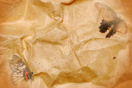 fly butterfly paper abstract background photo