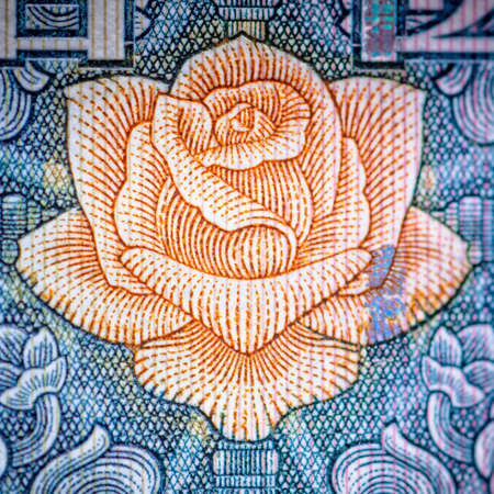 chinese money rmb background flower macro texture photo
