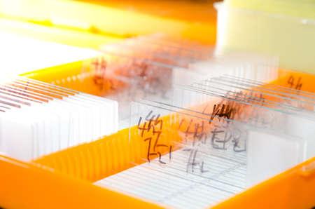 microscope slide: medical biological science equipment background glass microscope slide