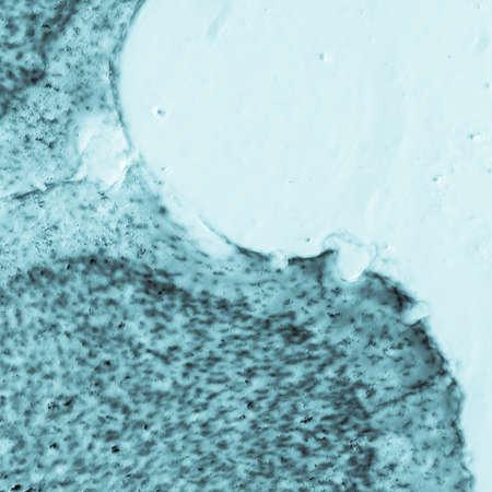 microscopy: science medical microscopy micrograph, rat brain hippocampal neurons