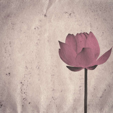 lotus flower on old grunge paper texture background Stock Photo - 13463466