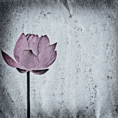 lotus flower on old grunge paper texture background photo