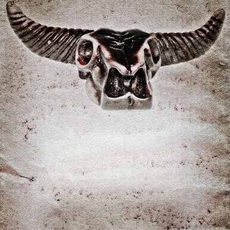 demon bull skull old grunge paper texture background photo